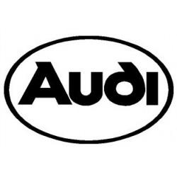 Lettrage AUDI logo (R1352)